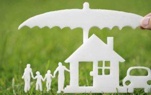 دعاوی امور بیمه و مالیاتی